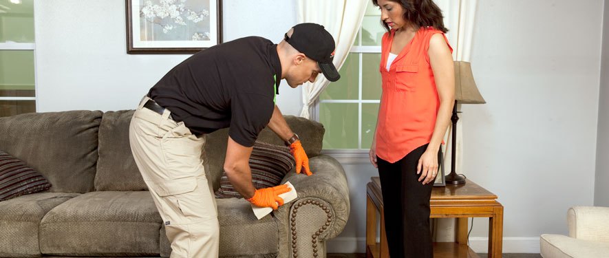 Athens, TN carpet upholstery cleaning