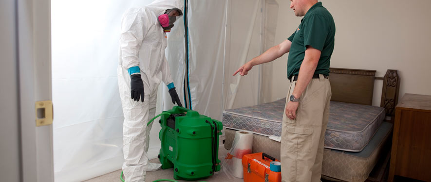 Athens, TN mold removal process